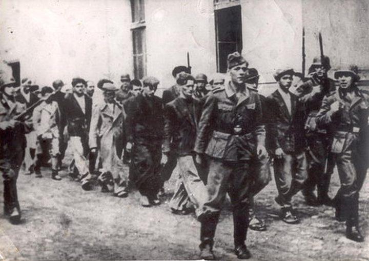 У Шумарицама је убијено 2.400 грађана, од тога 261 средњошколац