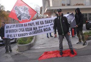 Nedićeve zasluge na transparentima, foto A. Stanković
