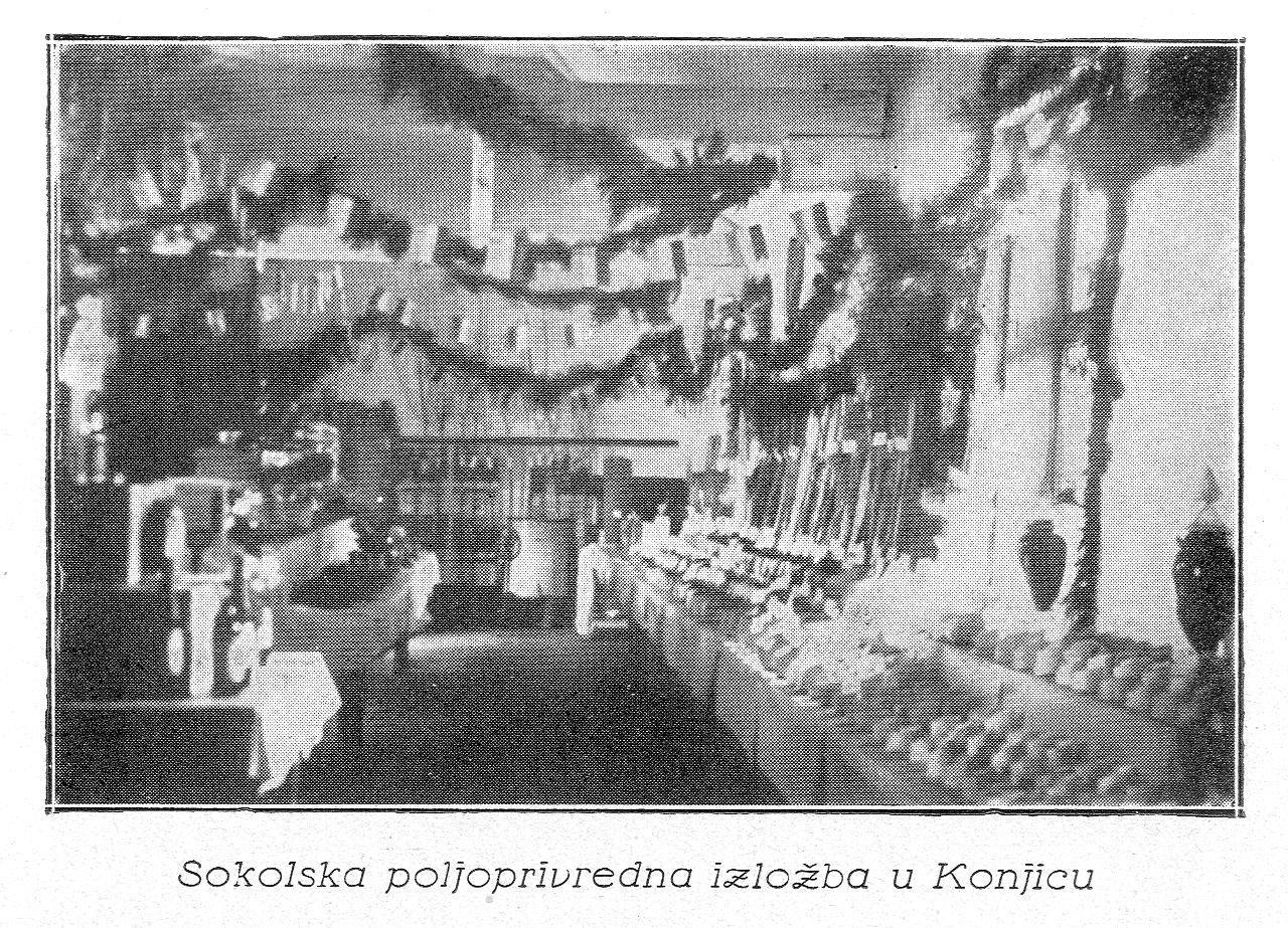 Sokolska_poljoprivredna_izlozba_u_Konjicu