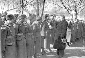 Milan Nedić za vreme Drugog svetskog rata
