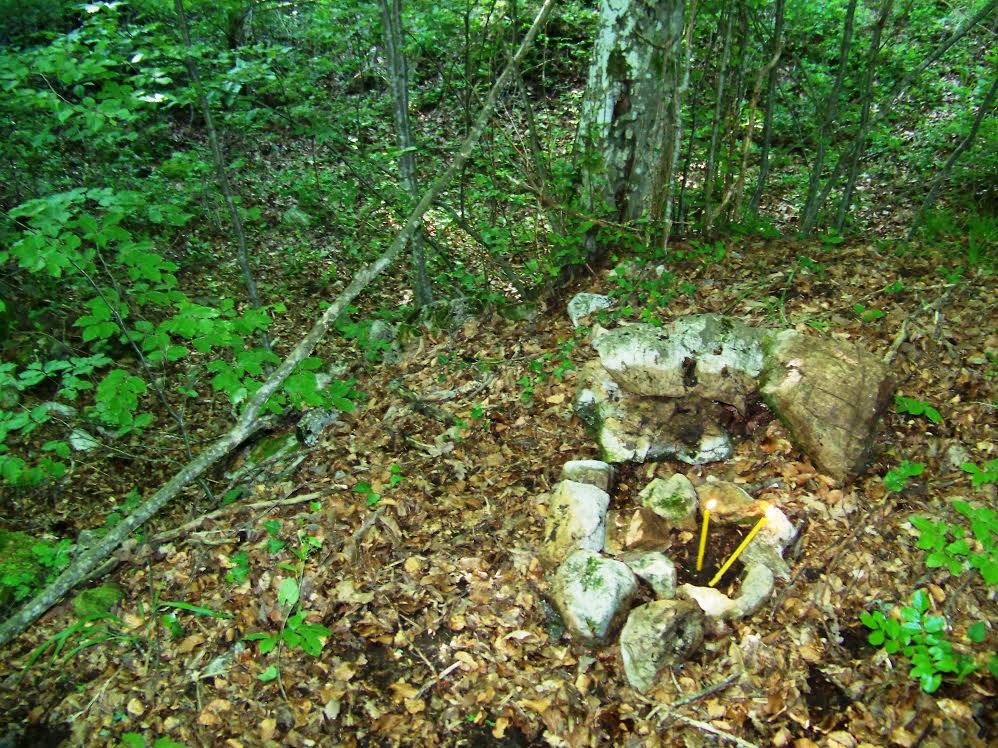 Grob mog pramđeda Jokić ( Petra ) Mile , u našem Gaju, gdje su ga ustaše ubile 1941., i tu je i ostao zauvjek da počiva.