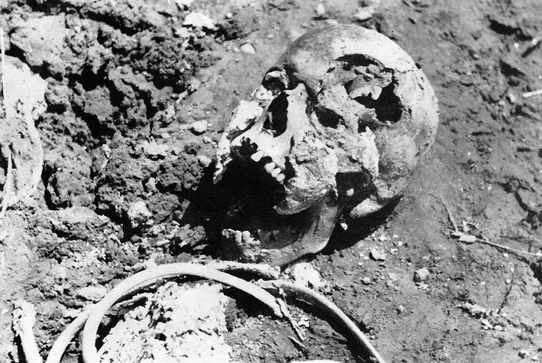 Jasenovac, na obali Save