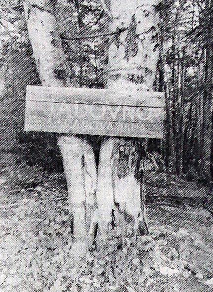 Šuma strave i užasa: osim spomenika, koji se sada završava, ovo je godinama bilo jedino obeležje najpoznatijeg velebitskog stratišta