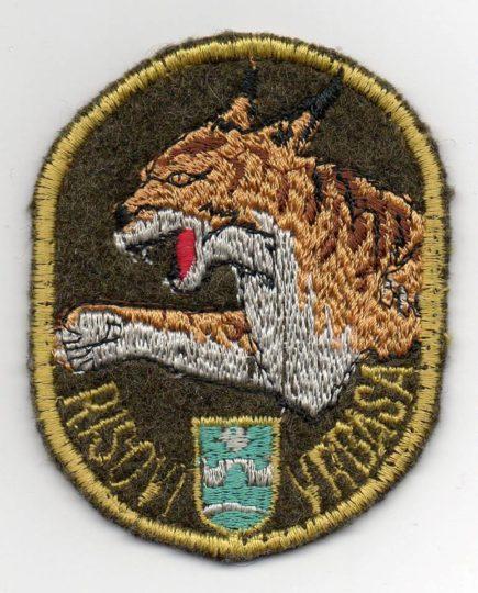 "Amblem ratne 238. lbae ""Risovi sa Vrbasa"", koji su nasledeli piloti 27. i 28. lbae VRS (izvor VRS)"