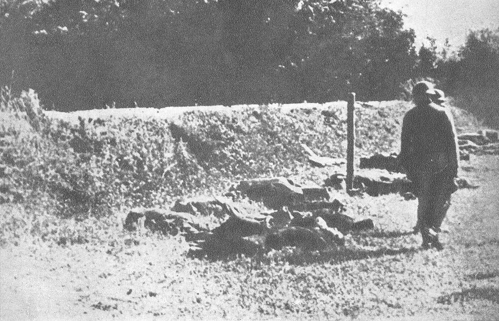 Posle prvog streljanja na Jajincima, 16. jula 1941.