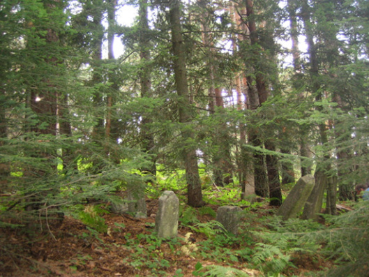 Slika 1. Stanje srpskog vojničkog groblja koje nikad nije održavano