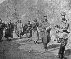 7. udarna banijska divizija - marš
