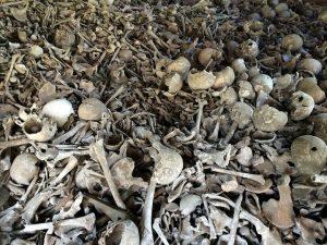 Kosti ubijenih Srba