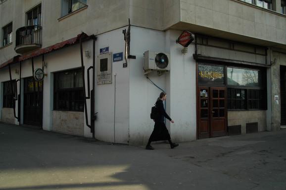 Foto: Nenad Kojadinović / RAS SRBIJA