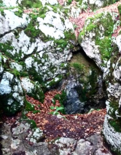 Grotlo Šaranove jame