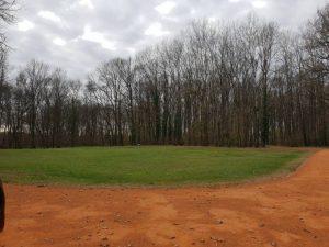 Polja smrti - grobice usred šume