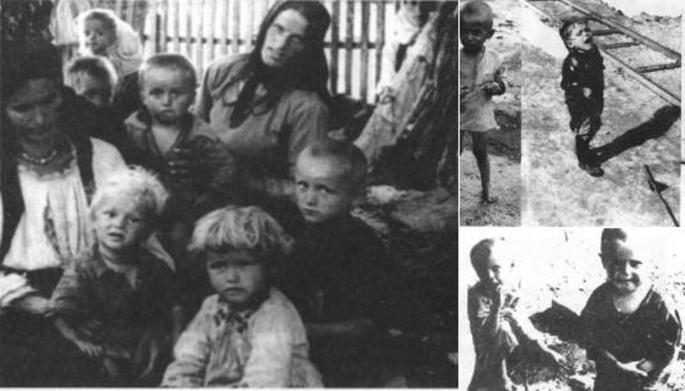 """Прођоше кроз најгоре садистичке и педофилске фантазије наших људождерских и србождерских комшија, с оне стране Саве и Дрине. Толико је све то језиво и ненормално да је тешко данашњим Србима да прихвате и осете то и такво страдање. Учили су нас да су наша браћа они који су ово урадили, свесно и без кајања. И ми још увек не прихватамо реалност и бежимо од ње, јер нам је """"мука од оваквих слика"""". А овој дечици и њиховим очајним мајкама није било мука да ДОЖИВЕ ОНО ШТО МИ НЕ МОЖЕМО ДА ГЛЕДАМО? Какви смо лицемери и нељуди постали!"""