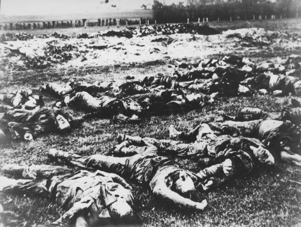 Tijela Srba ubijenih od strane ustaša u selu Gudovac leže u redovima na velikoj površini. (Izvor: United States Holocaust Memorial Museum Photograph Number: 46708. Muzej Revolucije Narodnosti Jugoslavije, Public Domain, Source Record ID: B 901/6)