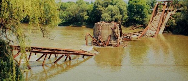 Foto S. Babović, arhiva VN, priv.arhive