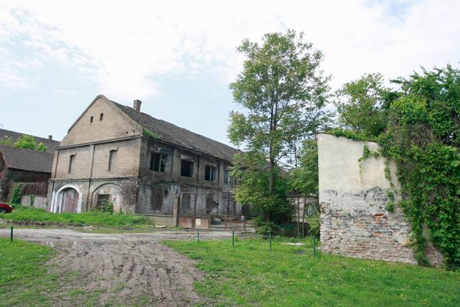 (Foto Beta /Miloš Miškov)