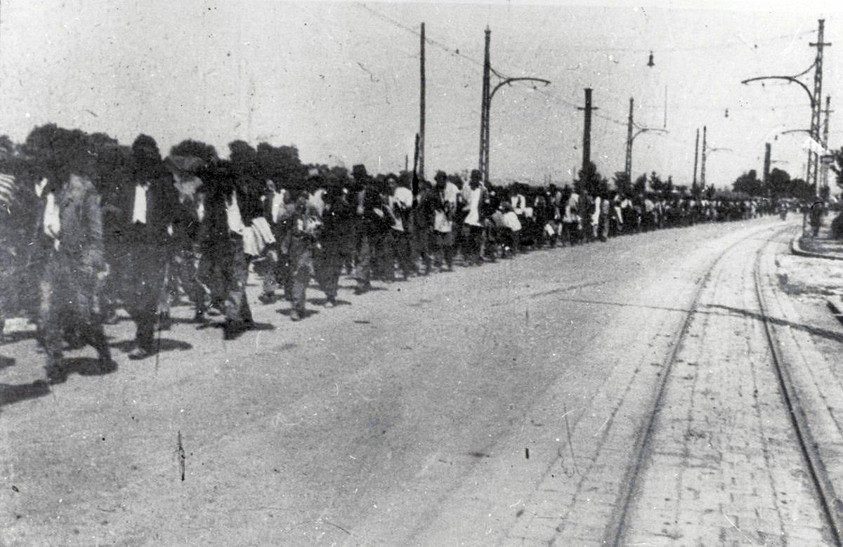 Transport Srba sa Kozare u Zemunski logor-smrti, ljeto 1942. godine.