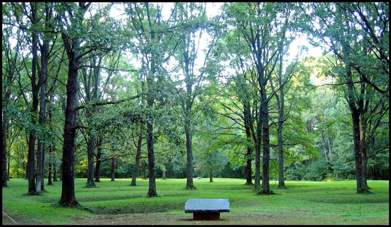 "Grobno polje ""HRASTOVI"" Ukupna površina grobnog polja ""HRASTOVI"" iznosi 9.600 kvadratnih metara. FOTO: Javna ustanova ""Spomen-područje Donja Gradina"""